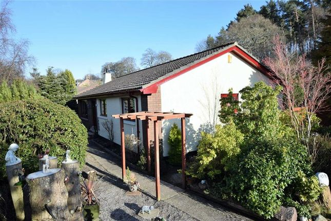 Thumbnail Detached bungalow for sale in Bunchrew, Inverness