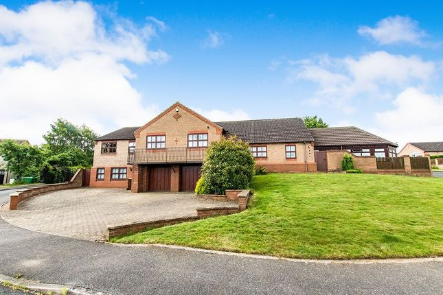 Thumbnail Detached house to rent in Nelson Drive, Washingborough, Lincoln