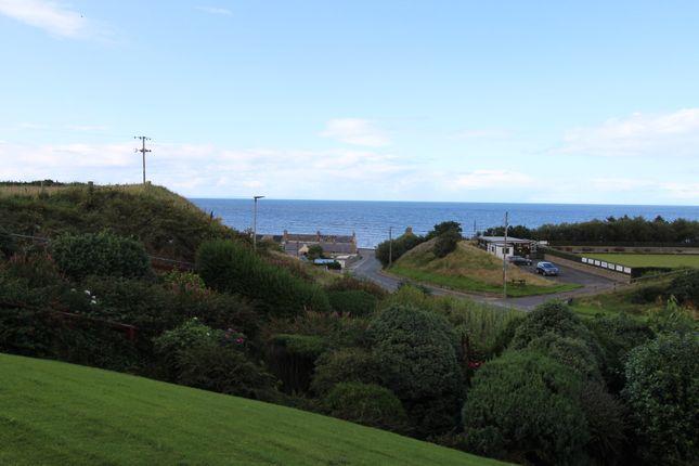 Rear Views of Reid Terrace, Portgordon AB56