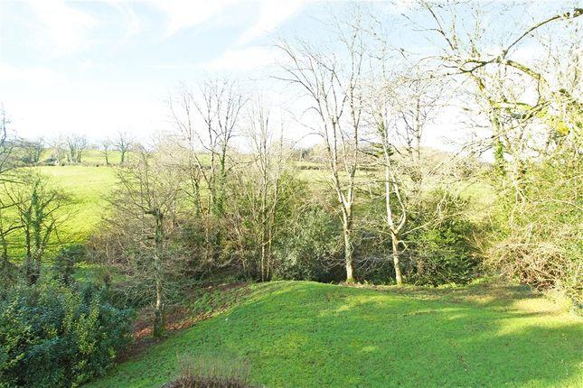 Garden of Churchill, Axminster, Devon EX13