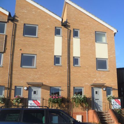 Thumbnail Terraced house to rent in Hawkins Road, Colchester