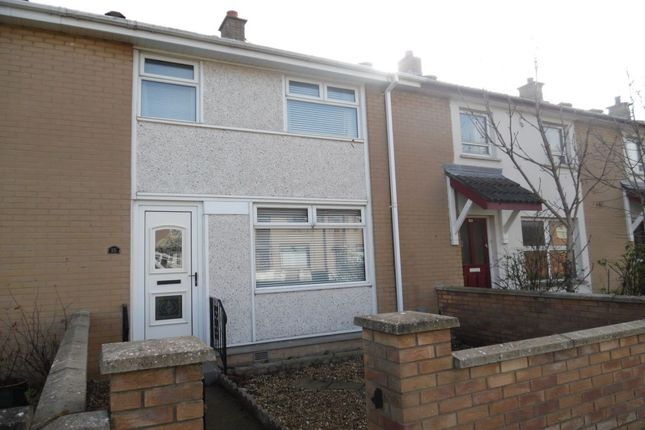 Thumbnail Semi-detached house to rent in Downpatrick Green, Newtownabbey
