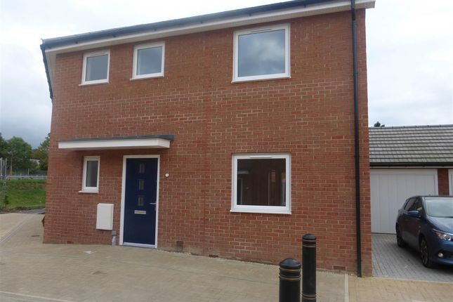 Thumbnail Property to rent in Quercetum Close, Aylesbury
