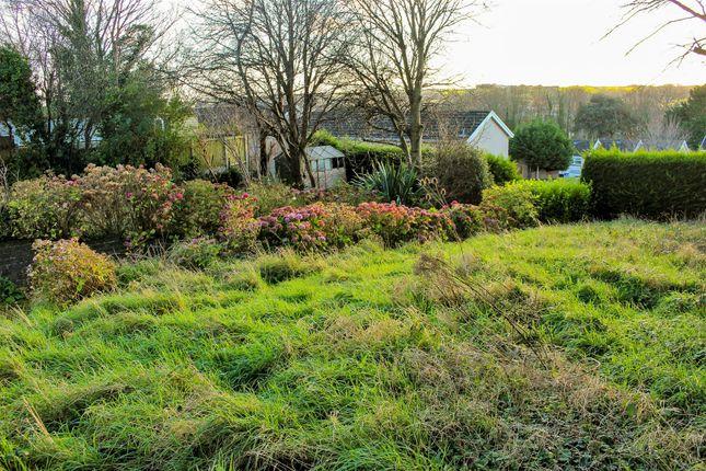 Img_9344 of Cheriton House, Golden Hill SA71