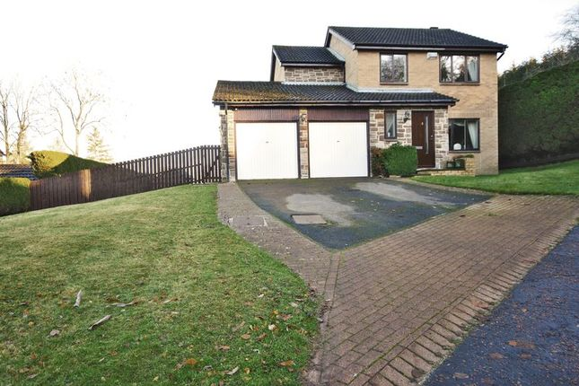 Thumbnail Detached house for sale in Loughbrow Park, Hexham