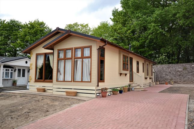 Thumbnail Bungalow for sale in Kinloch, Blairgowrie