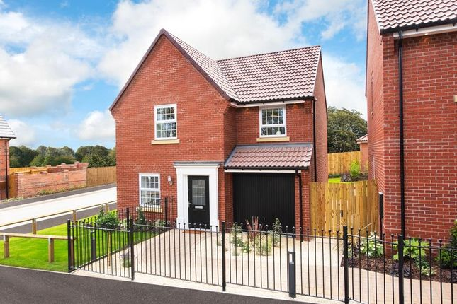 """Thumbnail Detached house for sale in """"Abbeydale"""" at Harland Way, Cottingham"""