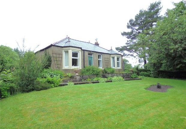 3 bed detached bungalow for sale in Raylton House, Greenhead, Brampton, Northumberland