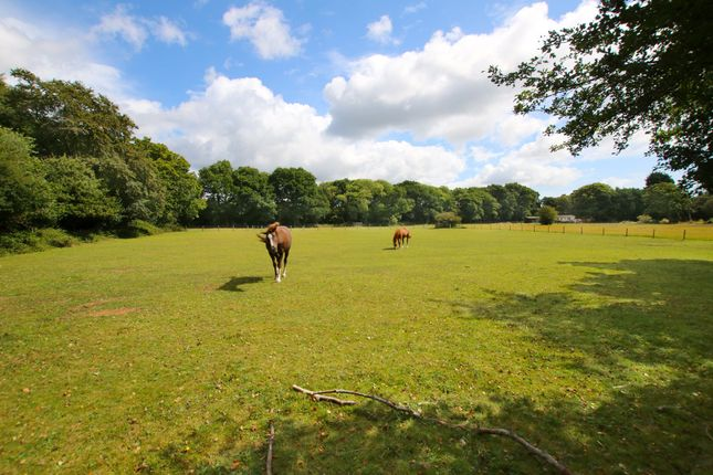 Thumbnail Land for sale in Green Lane, Ossemsley, New Milton, Hampshire