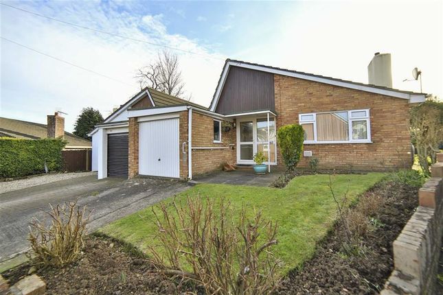 Thumbnail Bungalow for sale in St Andrews Avenue, Chepstow, Monmouthshire