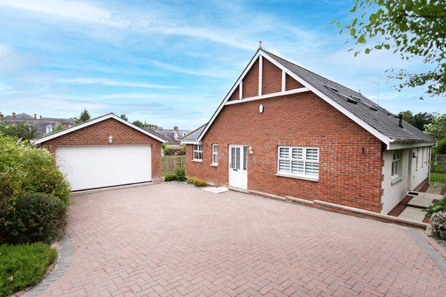 Thumbnail Detached bungalow for sale in Parkfoot Meadows, Dumfries