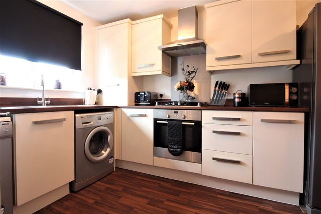 Thumbnail Terraced house for sale in Thorncliffe Road, St Dials, Cwmbran