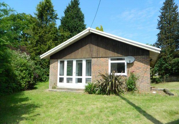 Thumbnail Bungalow to rent in Brighton Road, Lower Beeding, Horsham