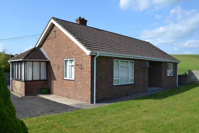 Thumbnail Bungalow to rent in Mill Lane, Lambourn, Hungerford