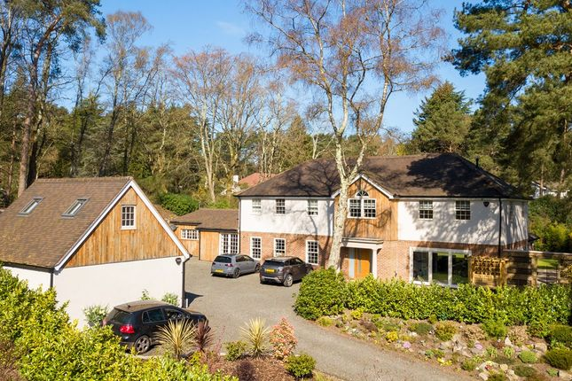 Thumbnail Detached house for sale in Chapel Rise, Ringwood
