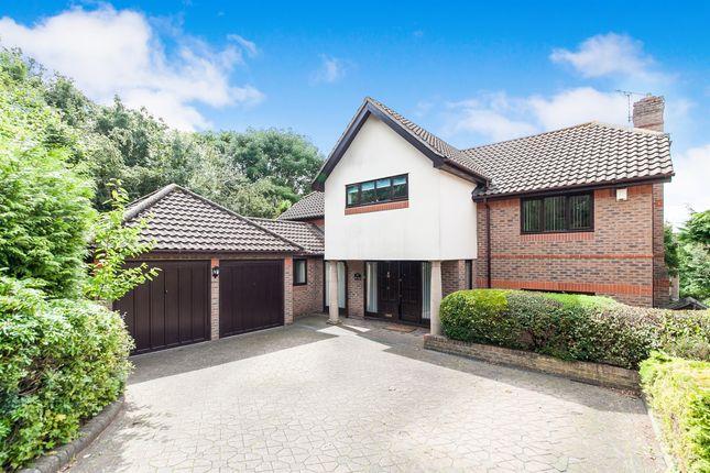 Thumbnail Detached house for sale in Reynards Copse, Highwoods, Colchester