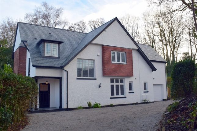 Thumbnail Detached house for sale in Northview Road, Budleigh Salterton