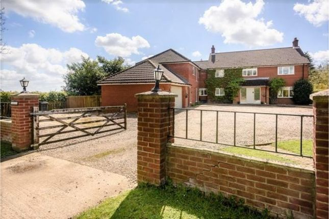 Thumbnail Detached house for sale in Black Carr, Attleborough