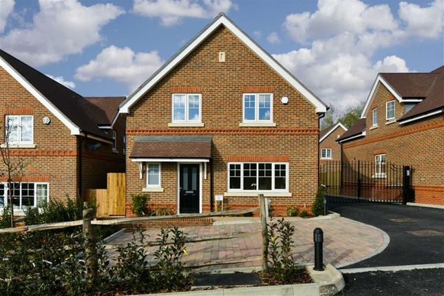 Thumbnail Detached house for sale in Woodlands Road, Epsom, Surrey