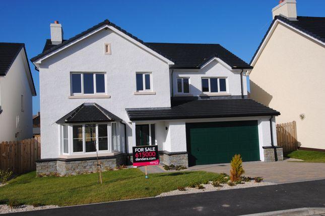 Thumbnail Detached house for sale in Lhoan Pibbin Vane, Reayrt Ny Cronk, Peel, Isle Of Man