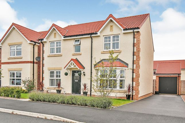 Thumbnail Detached house for sale in Dalton Wynd, Spennymoor, Durham
