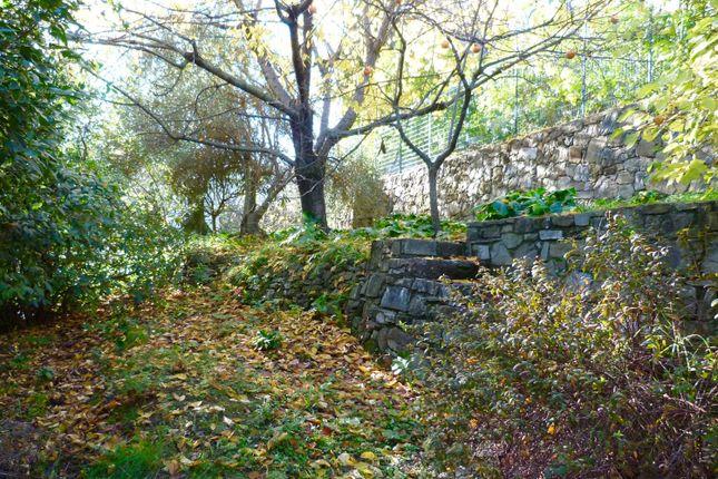Garden of Balloi, Camporosso, Imperia, Liguria, Italy