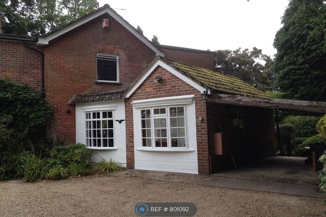 Thumbnail Detached house to rent in Vicarage Road, Verwood