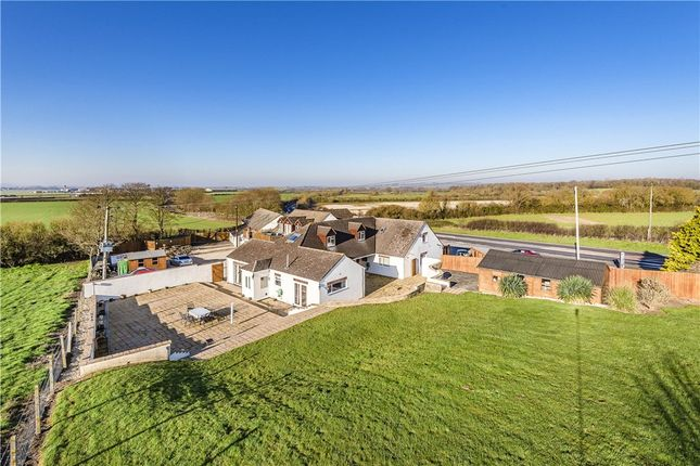 Thumbnail Detached bungalow for sale in Camel Cross, West Camel, Somerset