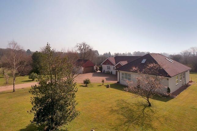 Thumbnail Detached bungalow for sale in Marley Road, Harrietsham, Maidstone