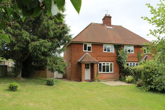 Thumbnail Semi-detached house to rent in Dummer, Basingstoke