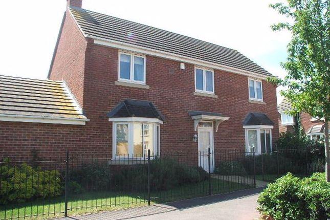 Thumbnail Property to rent in Westlake Ave, Hampton Vale