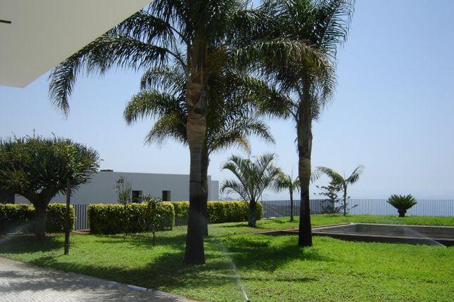 Views South-East of Funchal, Câmara De Lobos, Madeira Islands, Portugal