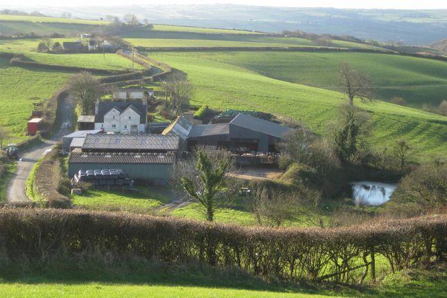 Farm for sale in Cwmfelin Boeth, Whitland