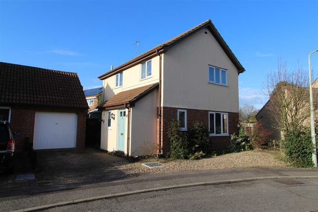 Thumbnail Detached house for sale in Fir Tree Close, Highwoods, Colchester