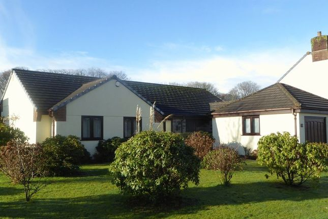 Thumbnail Detached house for sale in Manor Road, Tavistock