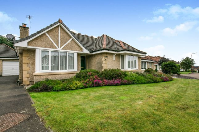 Thumbnail Detached bungalow for sale in Keirfold Avenue, Tullibody, Alloa