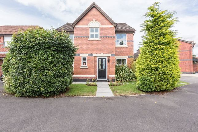 Thumbnail Detached house for sale in Cricketers Green, Eccleston