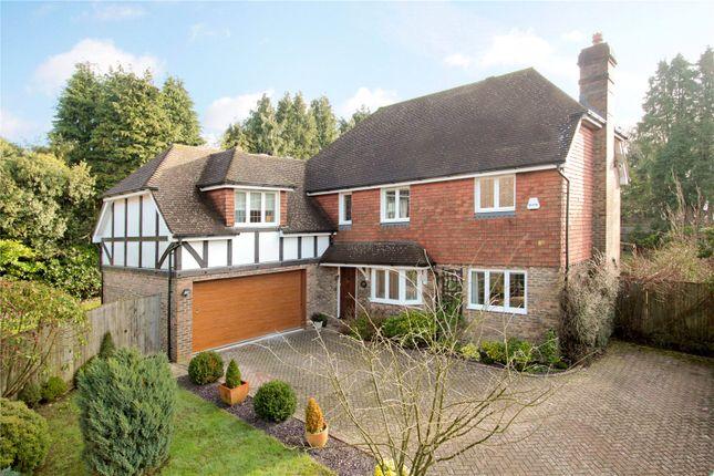 Thumbnail Detached house for sale in Langridge Close, Crowborough, East Sussex