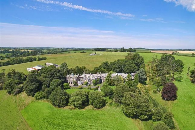 Thumbnail Property for sale in Werrington, Launceston