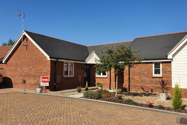 Thumbnail Detached bungalow for sale in Broadlands Way, Rushmere St. Andrew, Ipswich