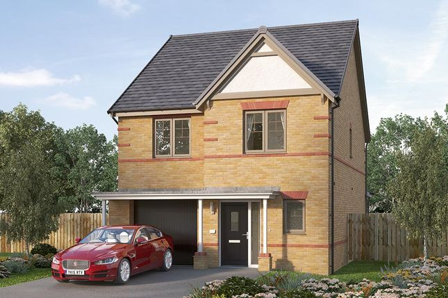 "Thumbnail Detached house for sale in ""The Holbury"" at Ward Road, Clipstone Village, Mansfield"