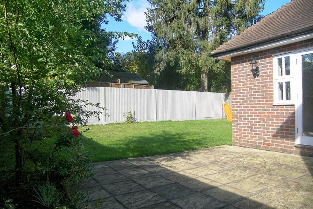 Side Garden of Coombe Road, Hill Brow, Liss GU33