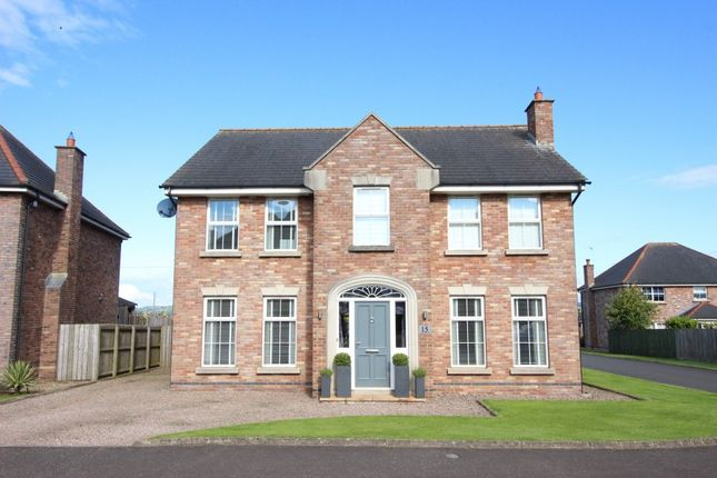 Thumbnail Detached house for sale in Forthaven, Ballyclare