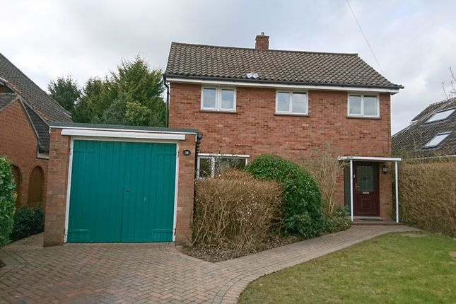 Thumbnail Detached house to rent in Lowther Road, Norwich