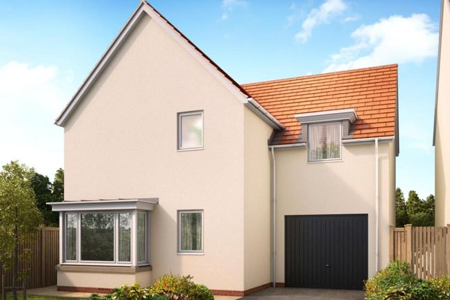 Thumbnail Detached house for sale in Camomile Lawn, Weston Lane, Totnes, Devon