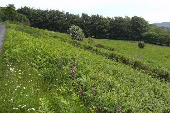Thumbnail Land for sale in Llanfair Clydogau, Lampeter, Ceredigion