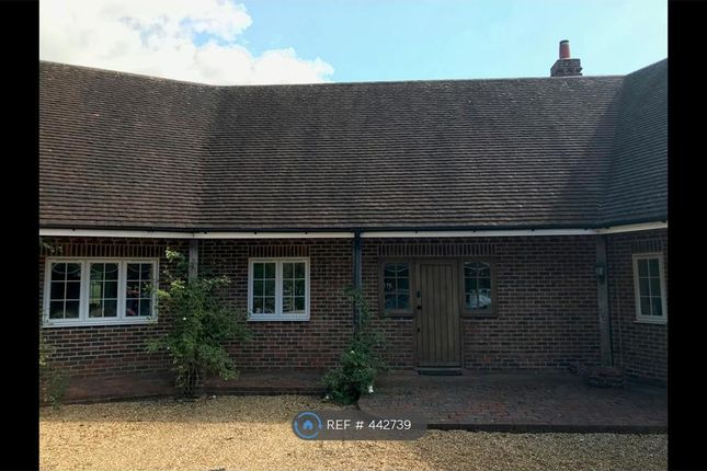 Thumbnail Semi-detached house to rent in Marsh Farm, Elsted, Midhurst