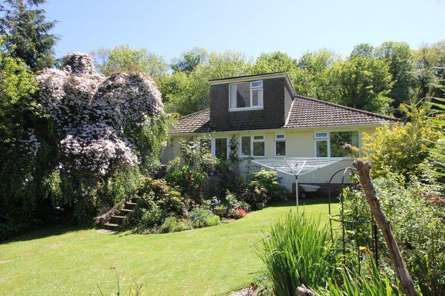 Thumbnail Detached bungalow for sale in Broadsands Road, Paignton, Devon