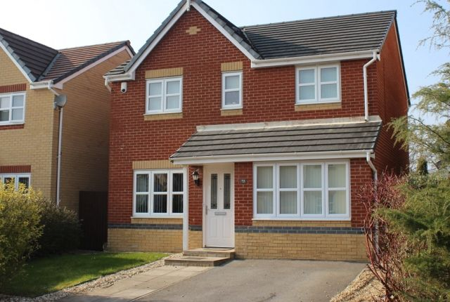 Thumbnail Detached house to rent in Maes Y Wawr, Birchgrove