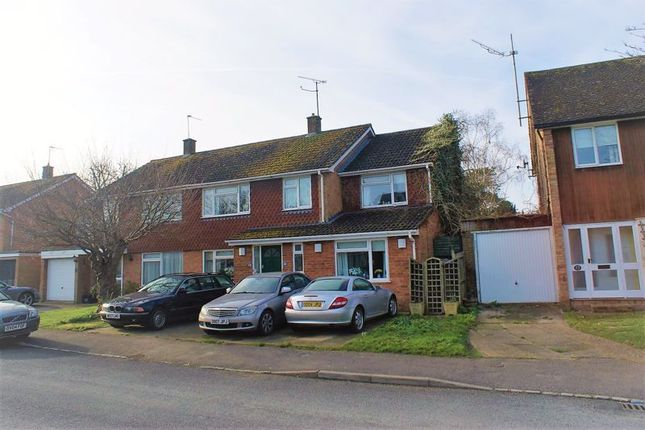Thumbnail Semi-detached house for sale in Wensley Close, Twyford, Reading
